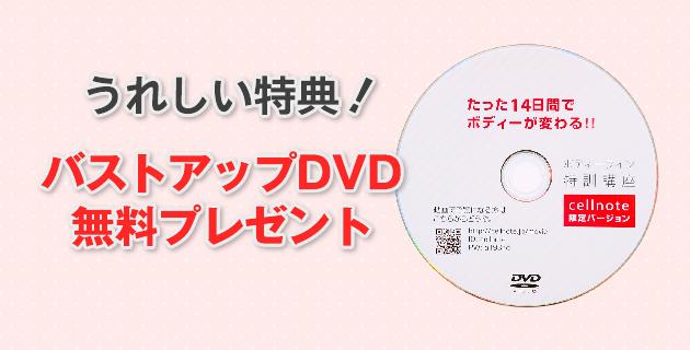 セルノートの特典DVD付き限定キャンペーン