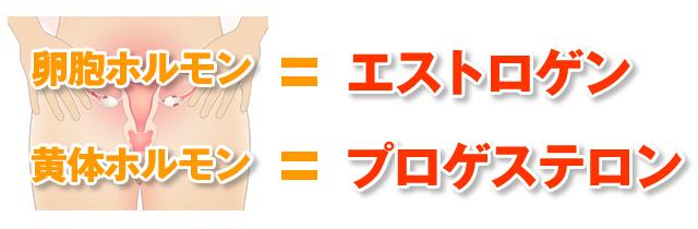 卵胞期ホルモン=エストロゲン、黄体期ホルモン=プロゲステロン